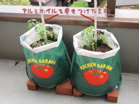 ミニトマト栽培キット
