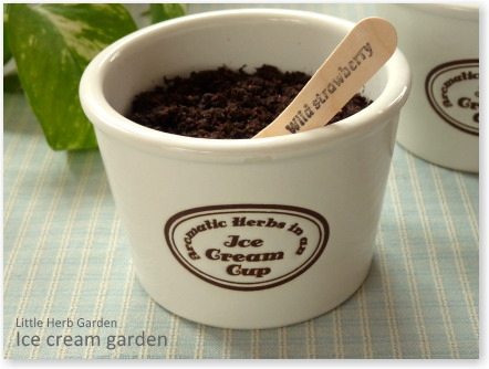 アイスクリームガーデン ハーブ栽培キット