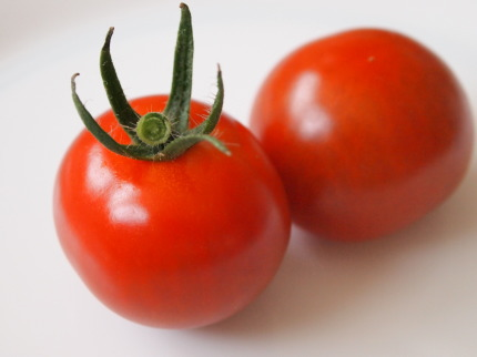 野菜栽培キット ミニトマト